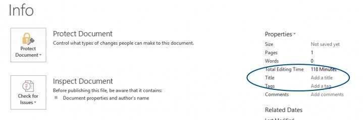 Microsoft Word 2013 Title field in Info menu